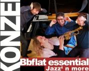 Bbflat essential_KonzertWaasscheFabrik