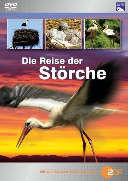 DVD Polarfilm Die Reise der Stoerche.jpg